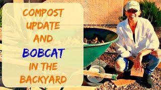 Composting in a Wheelbarrow - Compost Progress Update 2018, Arizona (a bobcat in the backyard)