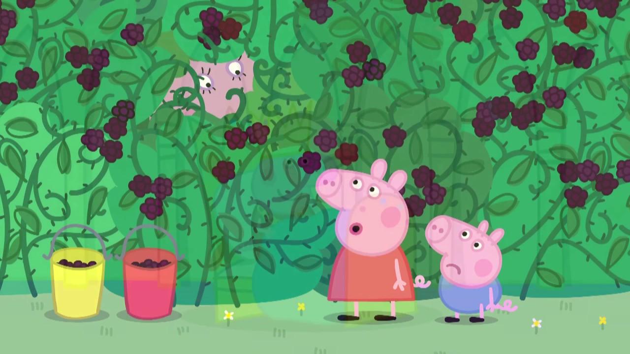 Peppa Pig 粉紅豬小妹 第四季26【黑莓灌木叢】中文版1080P