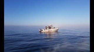 Duża mgła nad Bałtykiem zaskoczyła wędkarzy w motorówkach 20 km od brzegu