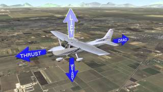 The Aviators 4: Tip of the Week 401 - Forces