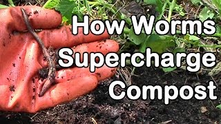 How Worms Supercharge Compost for Healthier Plants and Greater Yields thumbnail