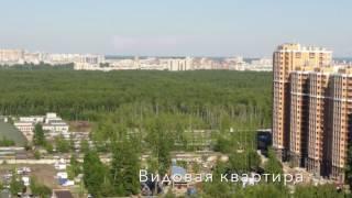 Купить 1 комнатную квартиру в Озерках с видом на Сосновку | АЛЕКСАНДР Недвижимость