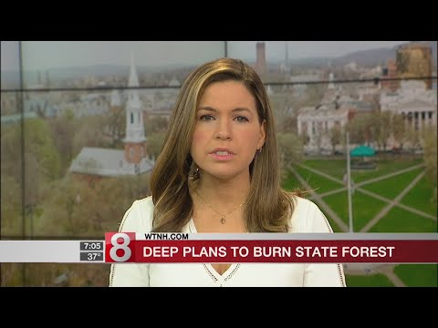 Controlled burn planned at Connecticut state forest