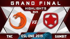 TNC vs Gambit Grand Final ESL One Hamburg 2019 Highlights Dota 2