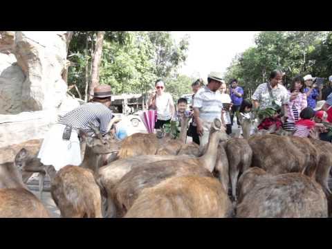 FocusKhonkaen #7 ร้านวรรณาไก่ย่างเขาสวนกวาง / สวนสัตว์ขอนแก่น อ.เขาสวนกวาง