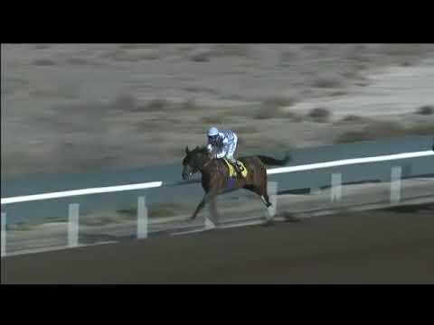 Jebel Ali 29/12/17 Race 2