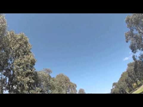 Killer Magpie Attack Canberra
