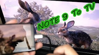 How To Connect Your Samsung Note 9/iPad Pro 2018 To Your T.V [4K] 60fps