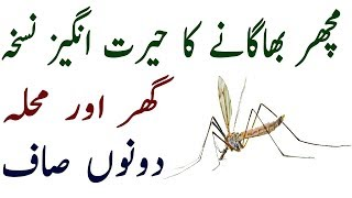 Get Rid Of Mosquitoes - Kill And Remove Mosquitoes From Your Room This Remedy Best Work