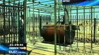 В Актау появился первый крематорий для животных