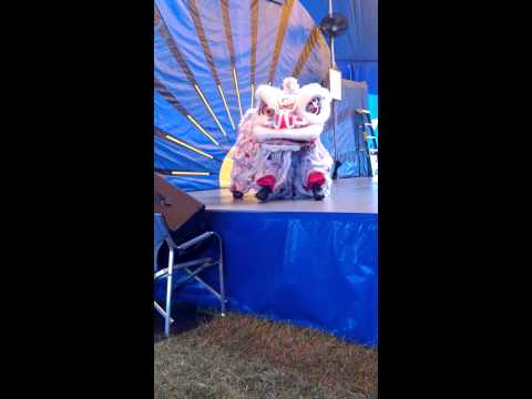 Liondancing at the Alameda county fair