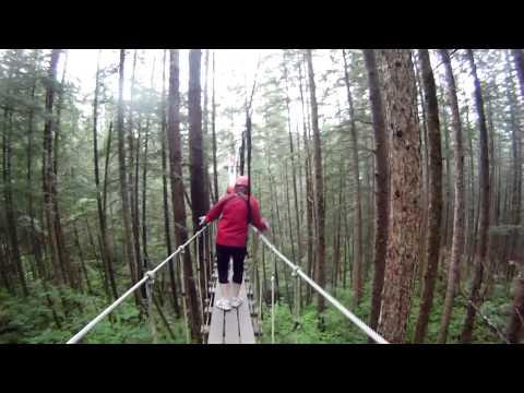 Ziplining in Juneau Alaska Rain Forest Canopy 2013