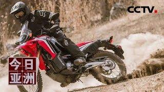 [今日亚洲]速览 惊险!老虎偷袭 摩托车手急加速死里逃生  CCTV中文国际