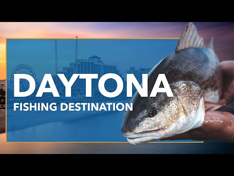 Fishing In Daytona Beach: All You Need To Know | FishingBooker