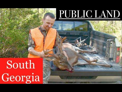 PUBLIC LAND South Georgia Deer Hunting: First Deer of the 2020 Season!