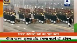 Army dogs participate in Republic Day parade after 26 years