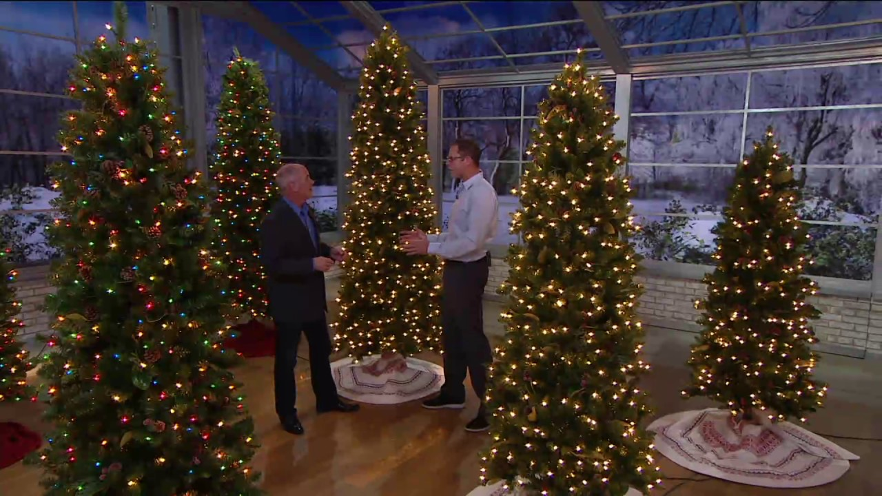 Qvc Christmas Trees.Bethlehem Lights Canterbury Slim Christmas Tree On Qvc