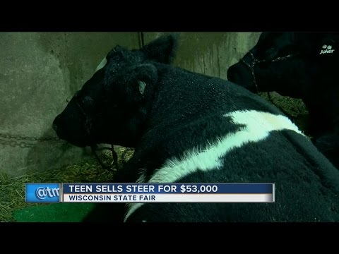 Kids win thousands at State Fair's Blue Ribbon Livestock Auction
