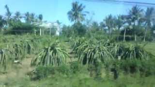 Green Island Phu Quoc Vietnam