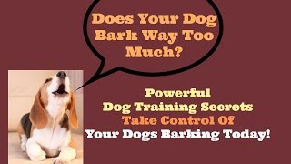 How To Stop A Dog Barking - Stop Dog Barking Before You Go Crazy