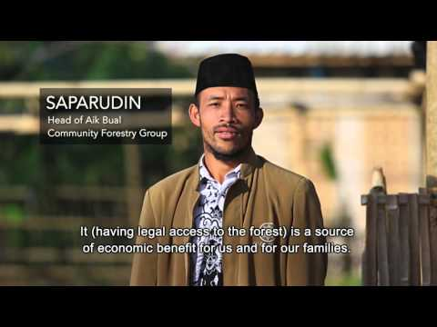 Fauna and Flora International: Carbon Trading in Indonesia