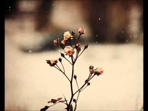 Every Breath You Take by Chase Holfelder (Cover & Lyrics)