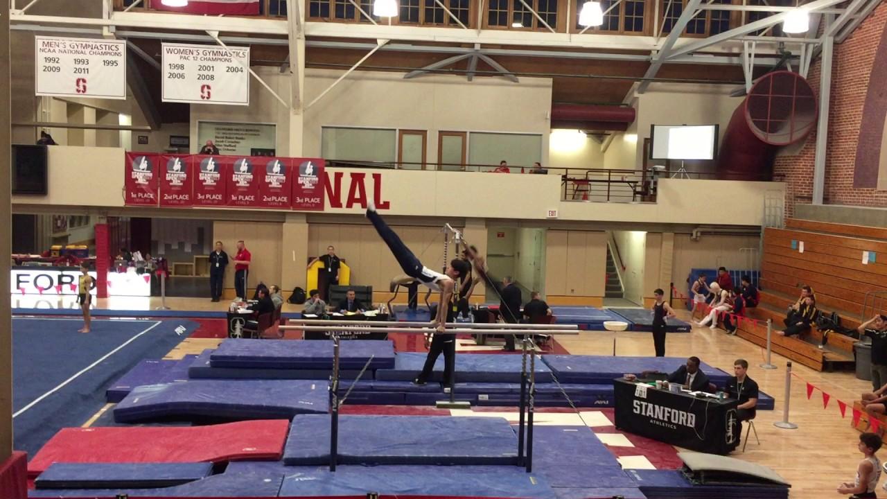 Tigar Gymnastics