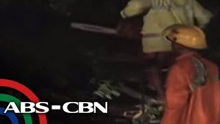 UKG: Super Typhoon Lawin topples trees in Ilocos Sur
