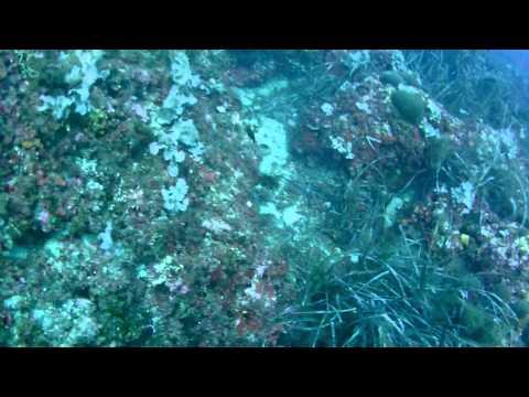 Plongée Caussinière 22 09 2013