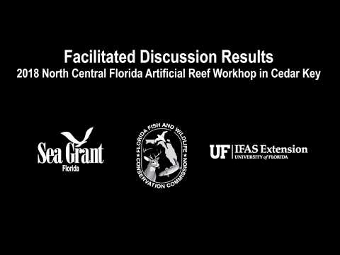 Facilitated Discussions: 2018 North Central Florida Artificial Reef Meeting