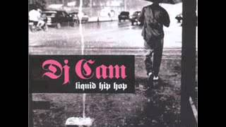 Dj Cam - Liquid Hip Hop (Complete album)