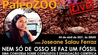 PALEOZOOBR LIVE: NEM SÓ DE OSSO SE FAZ UM FÓSSIL