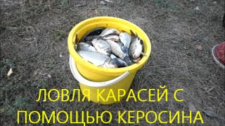 Ловля карасей с помощью керосина. Fishing for carp with the help of kerosene
