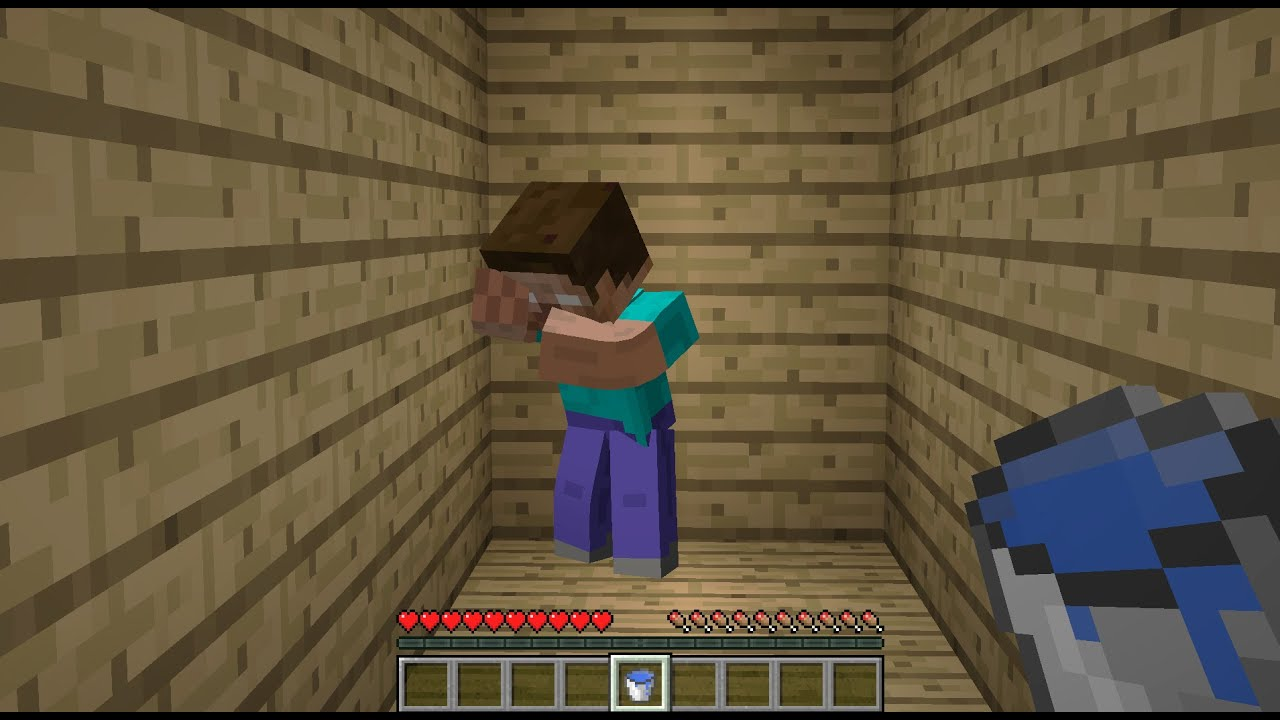 I save Herobrine from death... Or not?