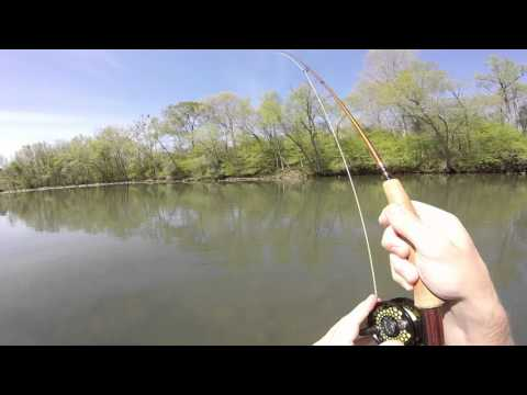 Little Missouri River Trout Fly Fishing