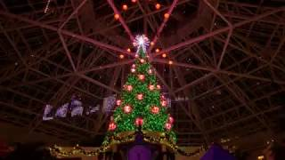Gaylord Palms Dreams of Christmas Light Show