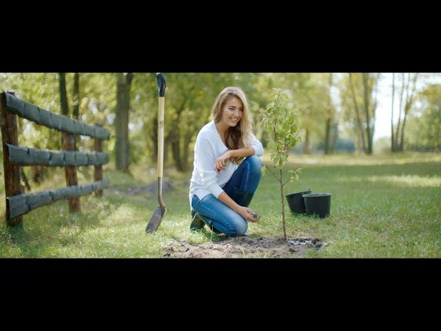 Еко-бьюти видео Miss Earth Ukraine 2017 Диана Мироненко