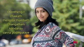 Chenthengin tharath - Two countries song edited by me..