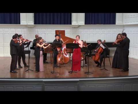 Bach - Double Concerto for Oboe and Violin (mv't 2 Adagio)