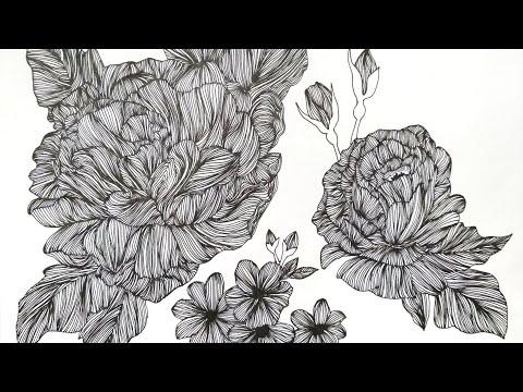 How to draw line art design| Rose Line Art | Pen illustration