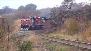 Ferromex ES44AC's y SD70ACe's 5 Locomotoras! Con Interpacifico Rumbo Norte: El Arenal Jalisco.