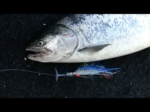 ActionDiscs - Trolling Flies And Hoochies For Silver Salmon - Puget Sound