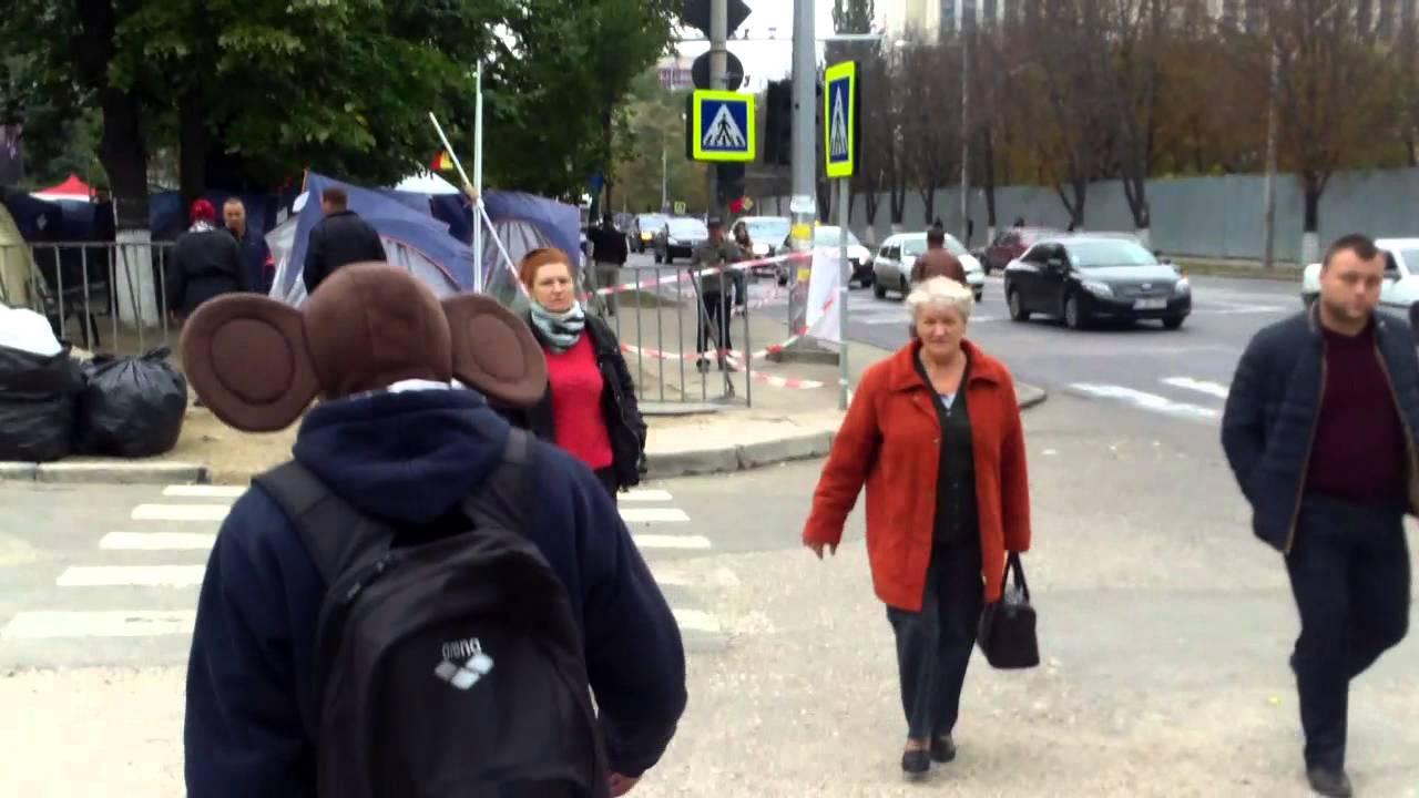 Ceburașca merge la protest și zîmbește oamenilor