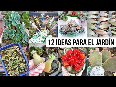 12-cosas-para-hacer-en-cuarentena-|-milicienta-#yomequedoencasa