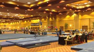 Blythe Terrell - Texas Dreams Gymnastics - 2015 - Level 8 - 2015 WOGA Classic - Beam