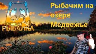 Русская рыбалка 4 РР4 В надежде поймать крупную рыбу на озере Медвежье