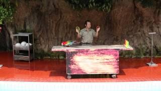 Ancol Gelanggang Samudera - Aneka Satwa show -  Macao Parrots