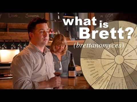 wine article What is Brett Brettanomyces Beer and Wine Making
