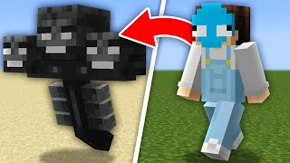 Download lagu Minecraft, But You Shapeshift Every Minute...