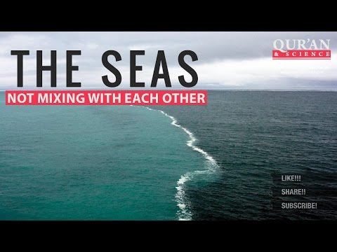 The Seas not mixing with each other ┇ Quran and Modern Scien